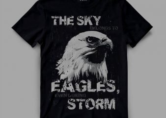 Eagle sky storm vector clipart