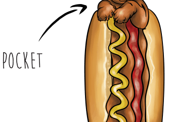 Hotdog pocket buy t shirt design