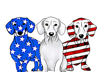Dachshund Breed Dog America Flag Patriot Design PNG T shirt | 4th Of July Dog mix Flag PNG