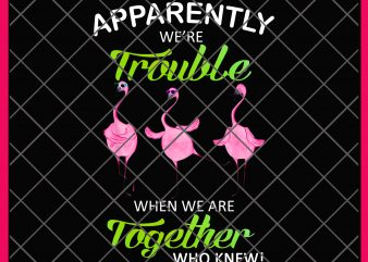 Flamingo Trouble Together PNG T shirt | Apparently We're Trouble When We Are Together Who Knew Funny Flamingo Design Shirt