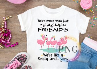 We're more than just Teacher Friends We're like a really small gang Flamingo T shirt