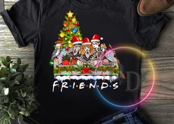 Harry Potters Hermione Ron Friends Merry Christmas T shirt