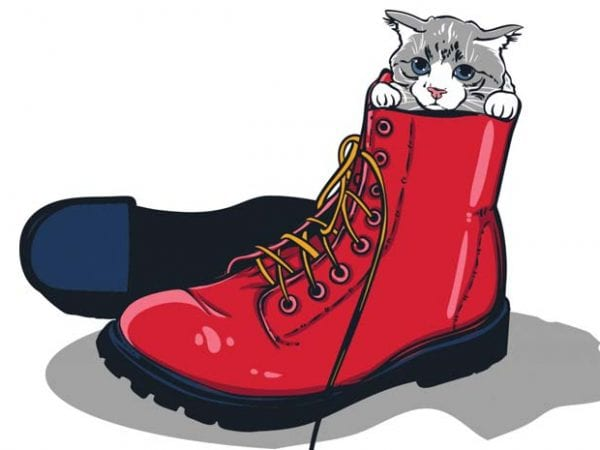 Puss in boots t shirt illustration